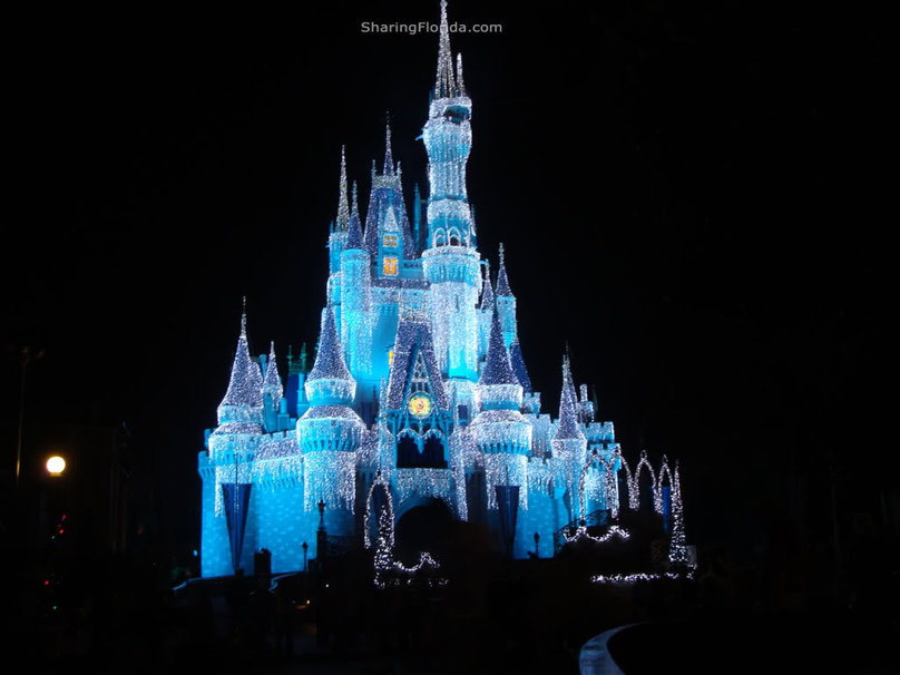 disney world castle wallpaper   ForWallpapercom 808x606