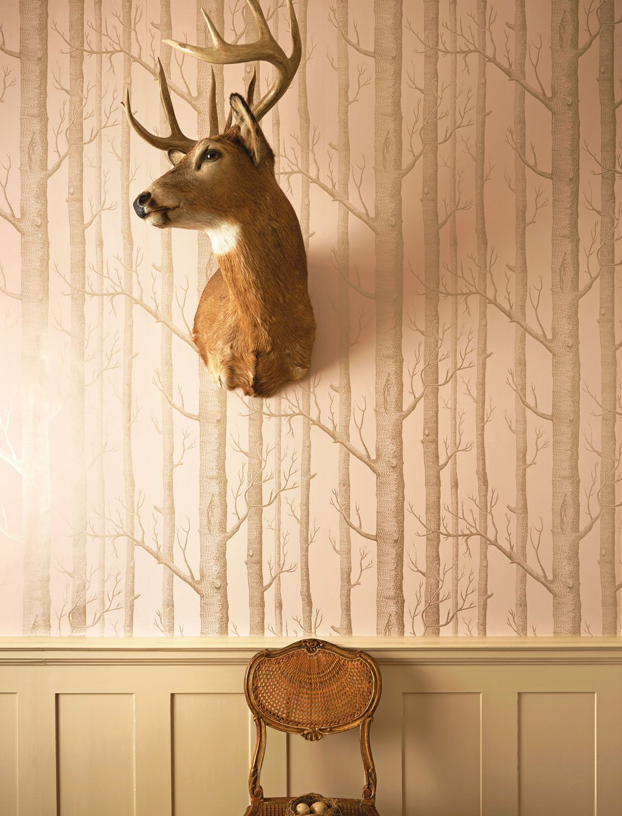 Woods 1035022   Whimsical   Cole Son Wallpaper Wood 1219x1600
