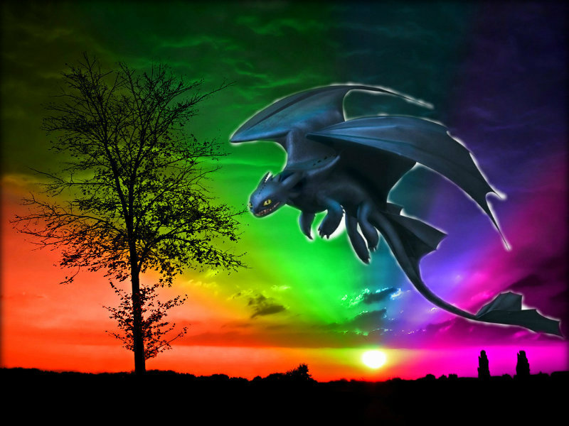 Hd Background Wallpaper 800x600: Toothless Wallpaper HD