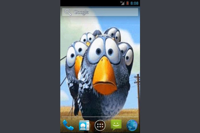Download the program Funny Birds Live Wallpaper Wallpaper for Android 700x464