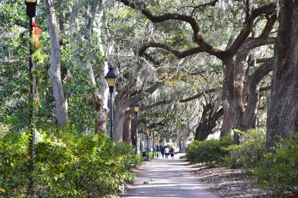 Savannah GA   Quintessence of the beautiful South   Traveler Photo 608x405