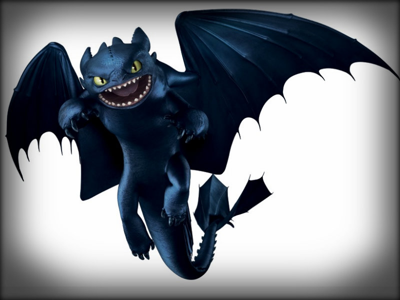 Toothless   Toothless the Dragon Wallpaper 32953563 800x600