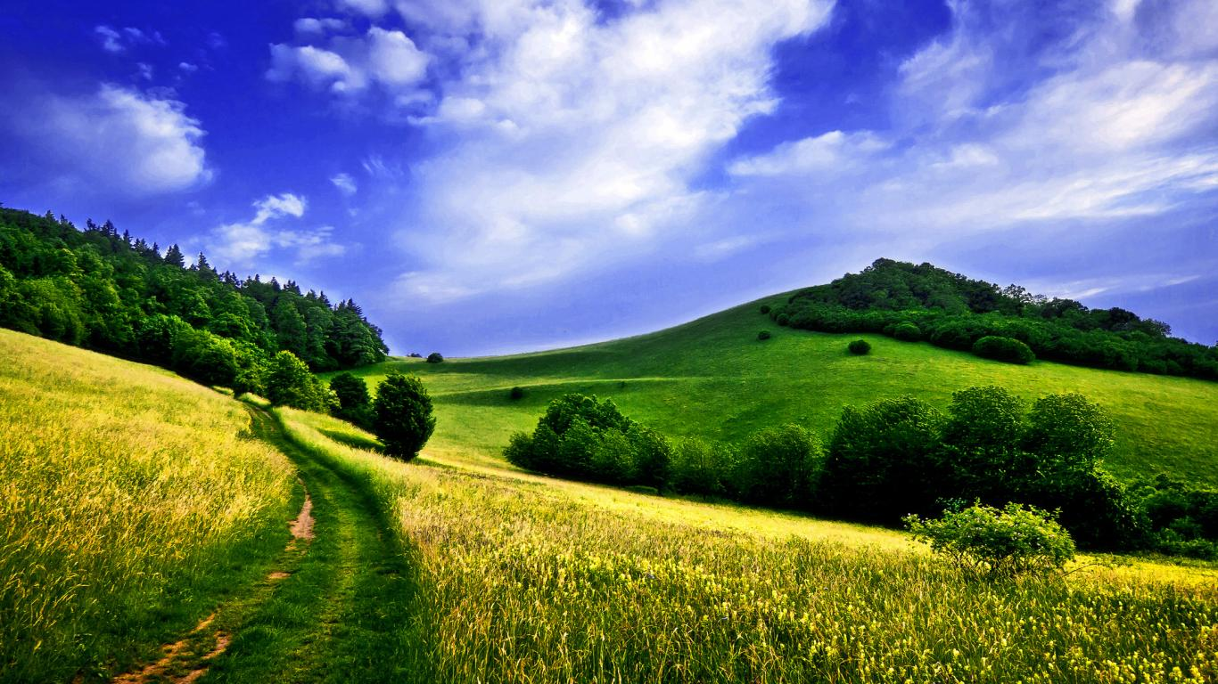 wallpaper Spring Season Background hd wallpaper background desktop 1366x768