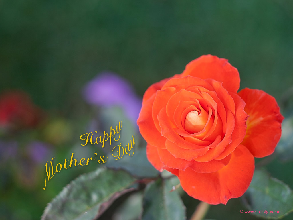 Source URL httpwwwsl designscomwpmothers day wallpaper1htm 1024x768