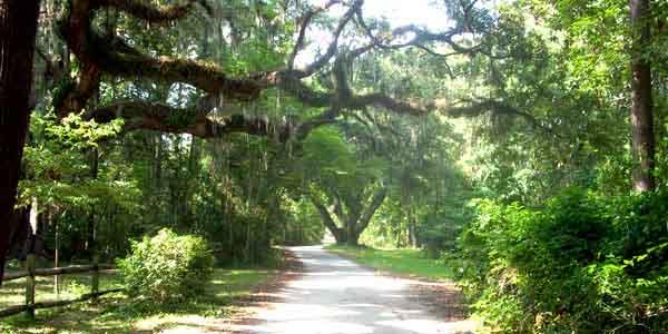 Bluffton South Carolina 1 600x300