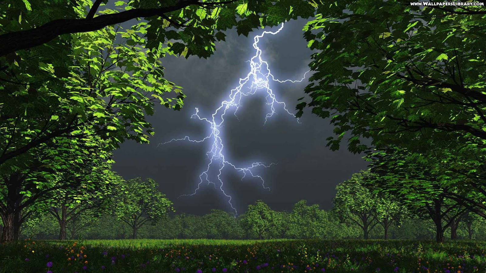 Wallpapers   HD Desktop Wallpapers Online Lightning Strikes 1600x900