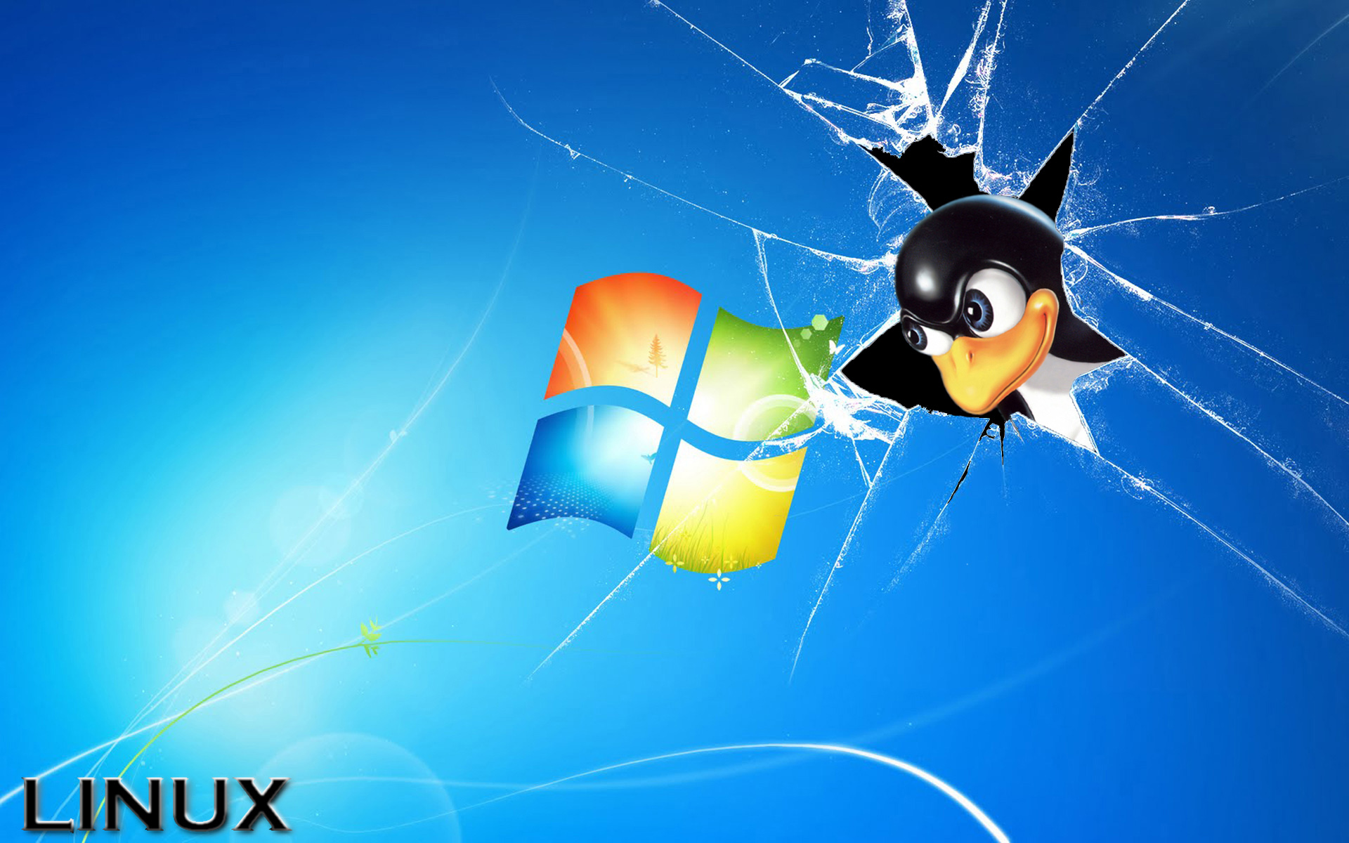 Windows apesta Linux 7 febrero 2011 1920x1200