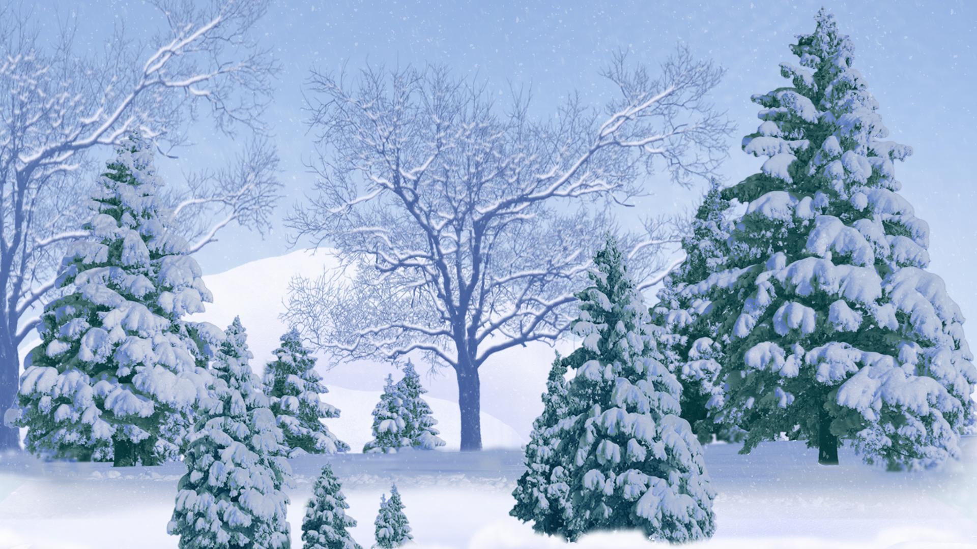 Group of Winter Snow Background With