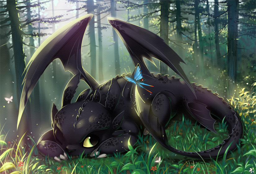toothless Hiccup And Toothless Train Your Dragon and 825x561