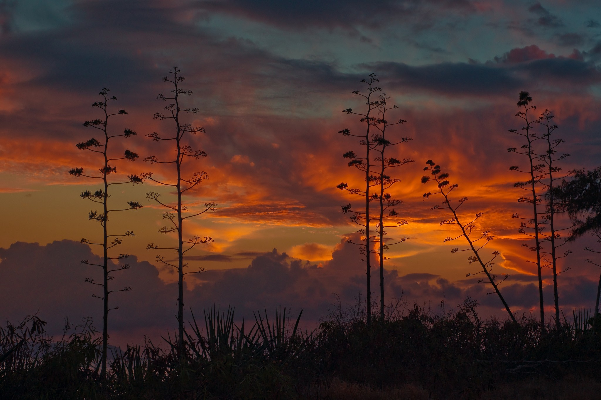 Display River Backgrounds Kauai Backgroundfree Images Sunset 2048x1361