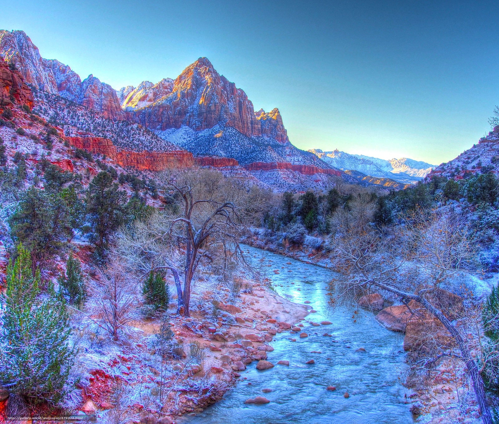 Download wallpaper Zion National Park small river Mountains trees 1600x1362