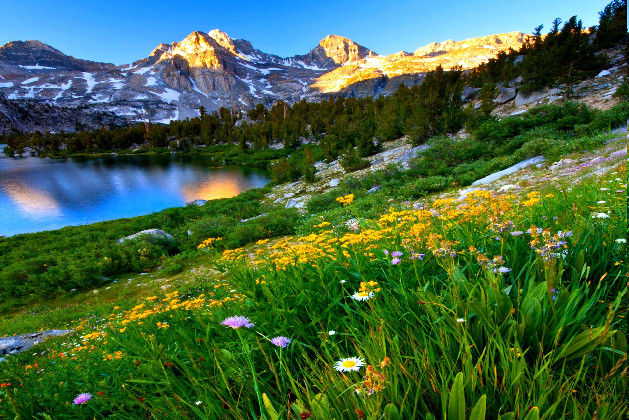 Free spring desktop wallpapers nexus wallpapersafari - Mountain screensavers free ...