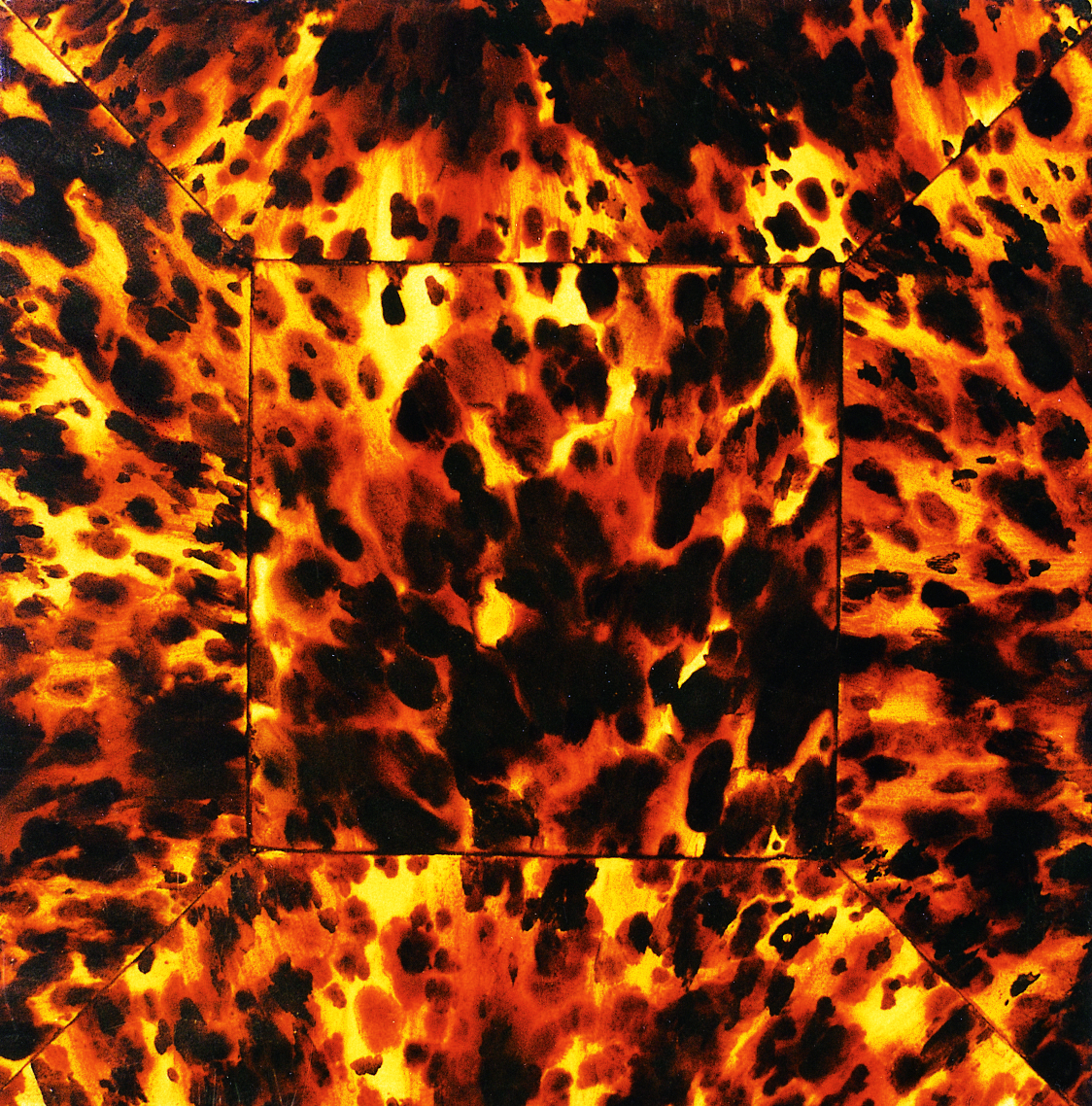 tortoise shell sold and tortoise tortoise is sets style faux 1124x1138