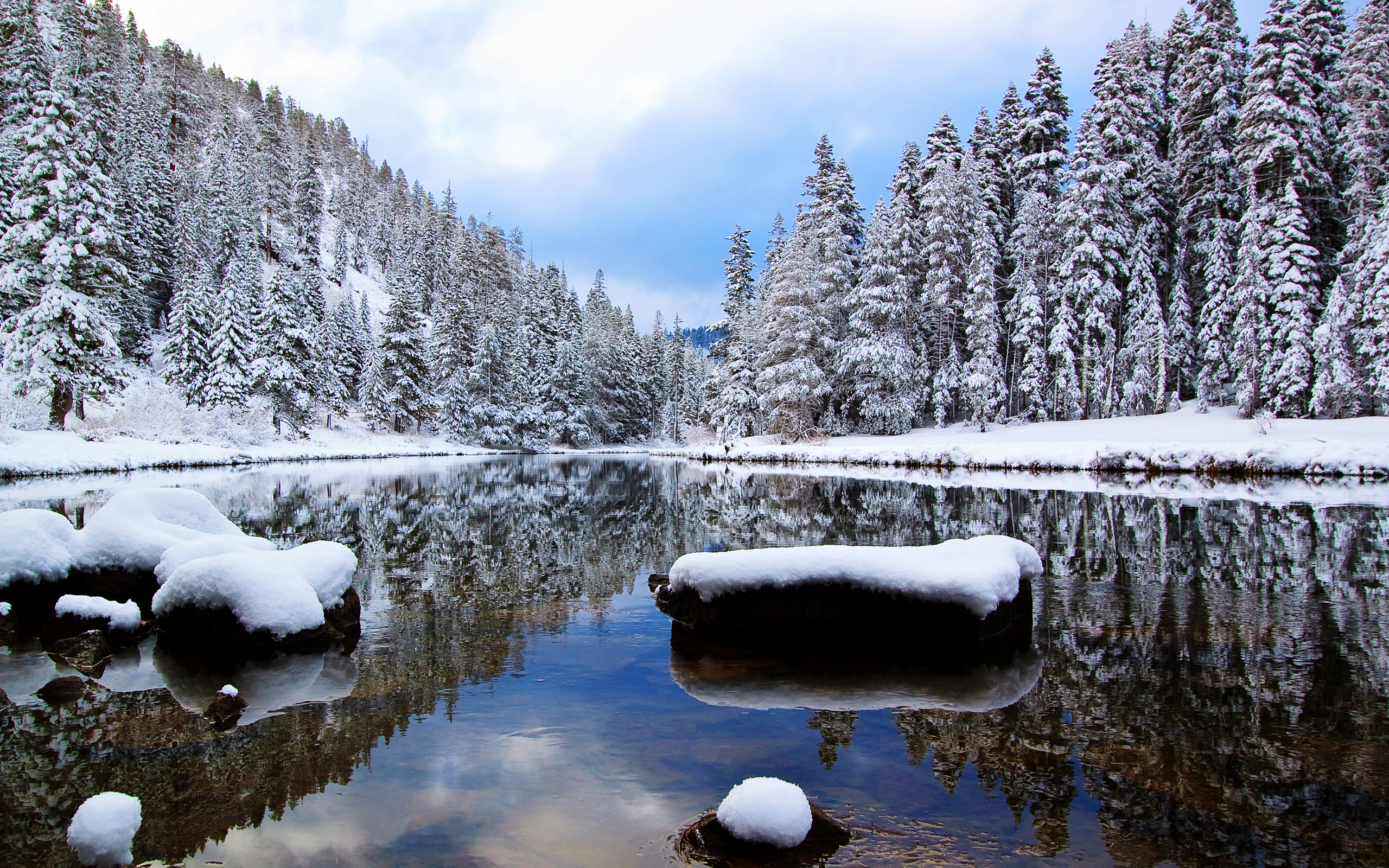 Winter Desktop Wallpapers FREE on Latorocom 2560x1600
