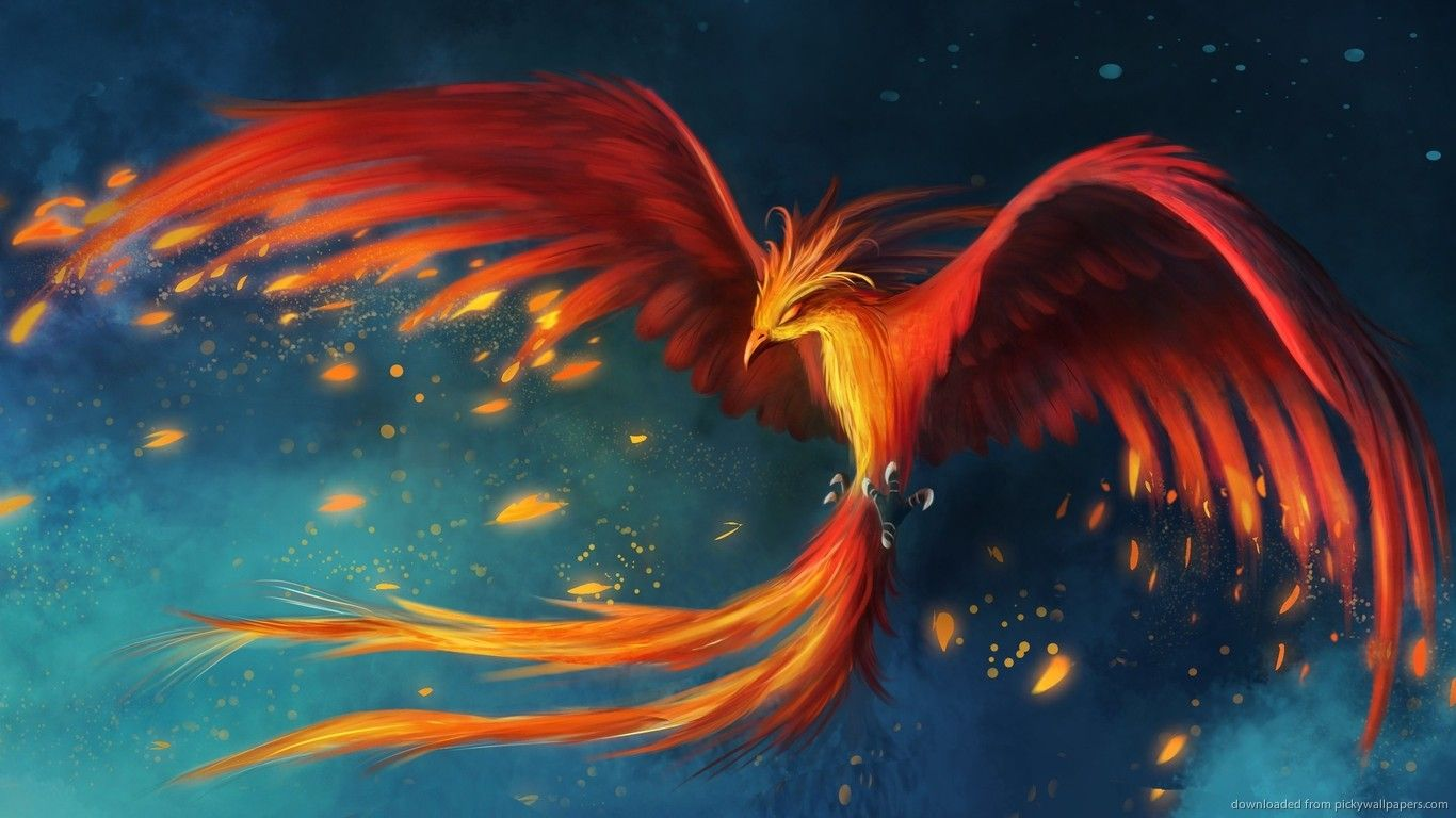 The Feather of Fire A Magical Phoenix RP NEEDS PLAYERS 1366x768