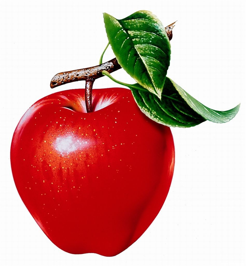 Desktop Background Wallpapers Delicious apple fruit wallpapers 949x1024