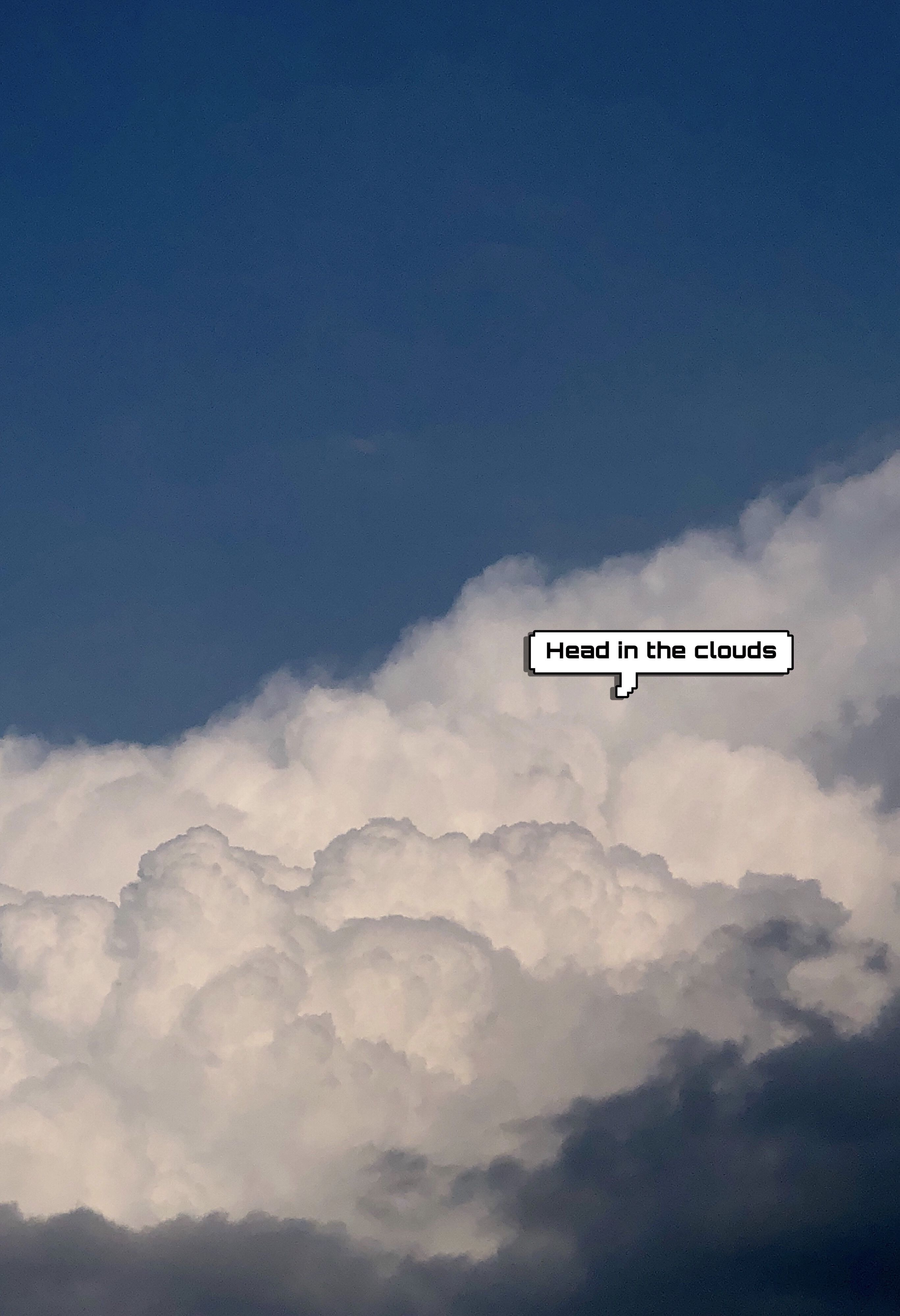 Head in the clouds With images Clouds Sunflower wallpaper 2735x4000