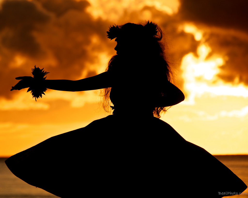 Hula Dancer Silhouette Hula Dancer si 1024x819