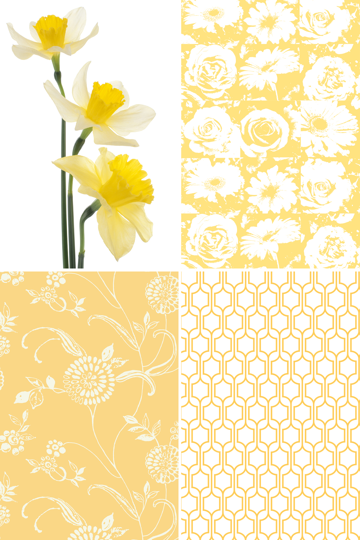 Trellis wallpaper KB8649 from Yorks Bistro 750 collection 1200x1800