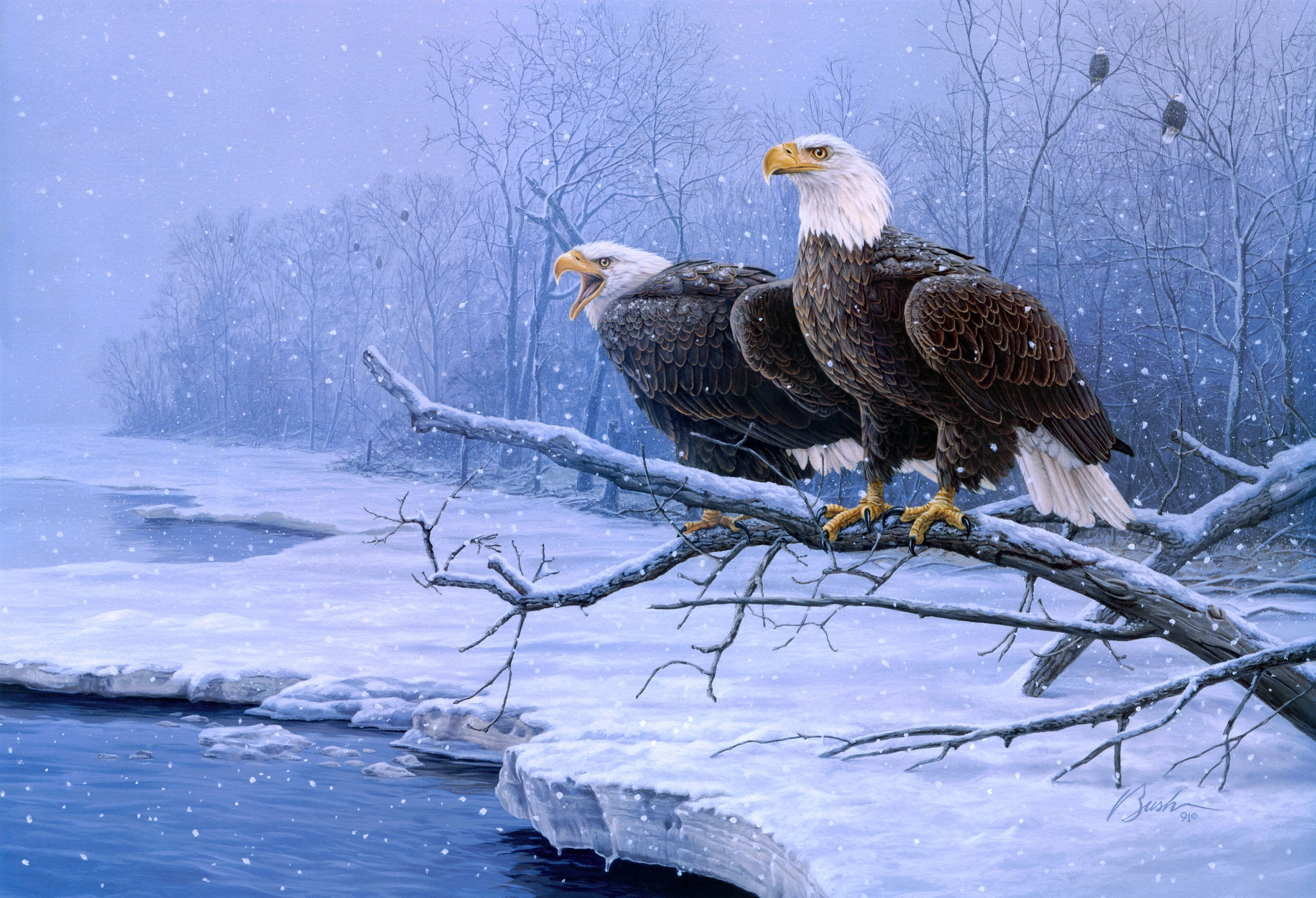 bald eagle wallpaper screensavers - wallpapersafari