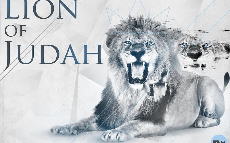 Len de Judah fondo de pantalla fondos de pantalla gratis 800x500