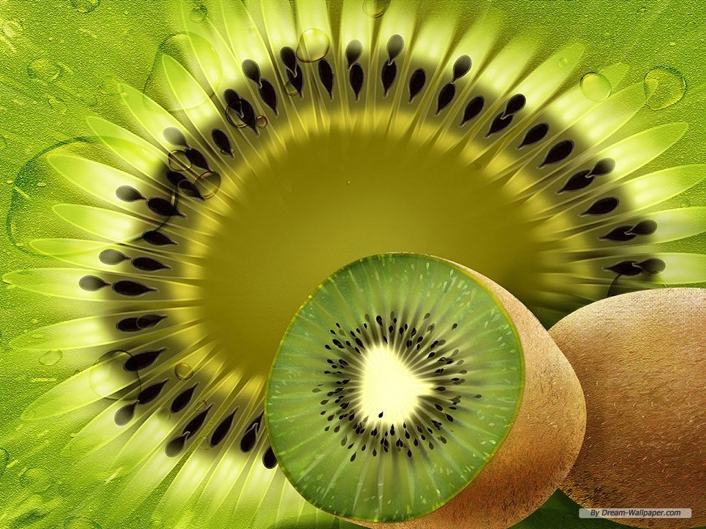 Kiwi Fruit Wallpaper   Fruit Wallpaper 7004620 1024x768