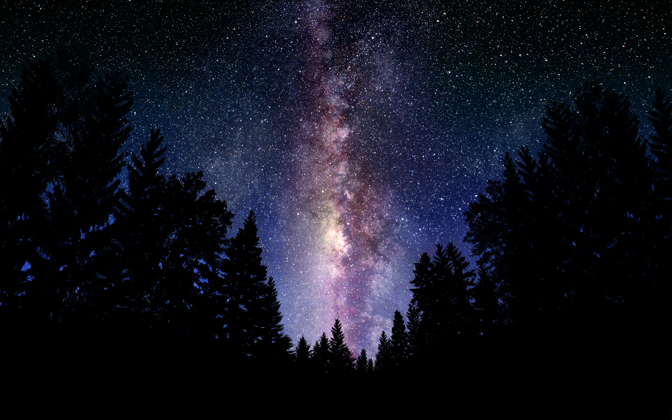 wallpaper Starry Night sky over the forest Wallpapers 3d for desktop 2560x1600