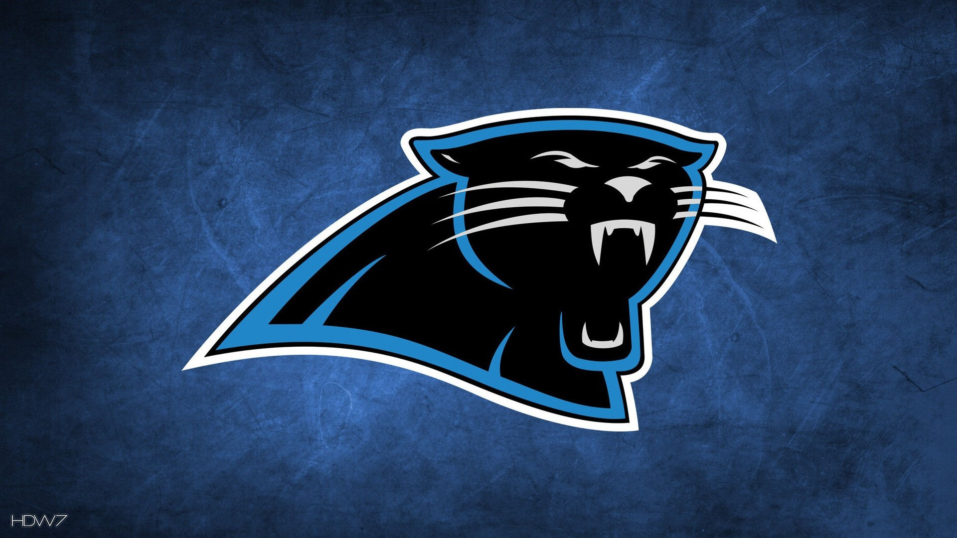 carolina panthers nfl 1920x1080 HD WALLPAPERS GALLERY 116 1920x1080