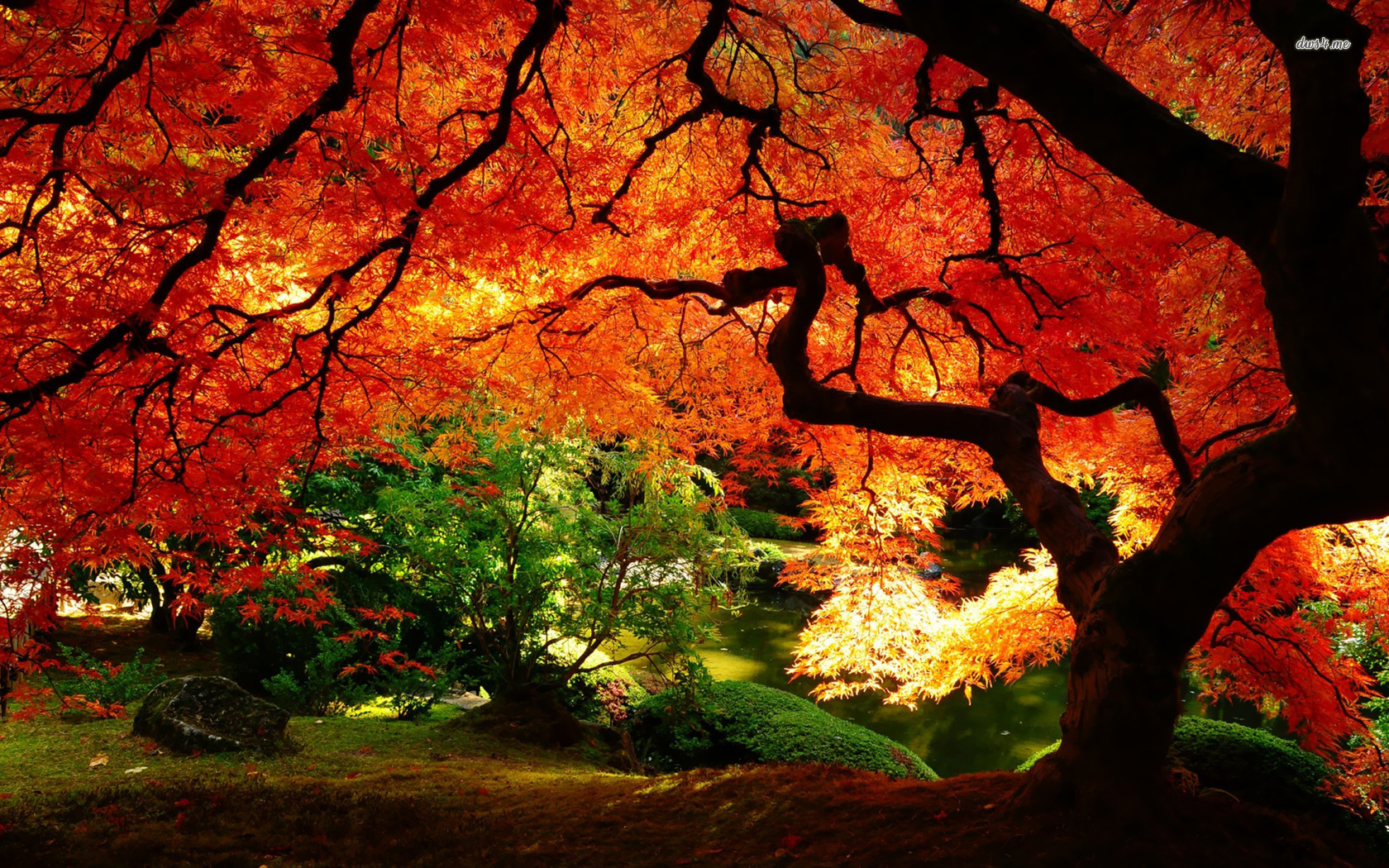 Fall Landscapes Wallpaper - WallpaperSafari