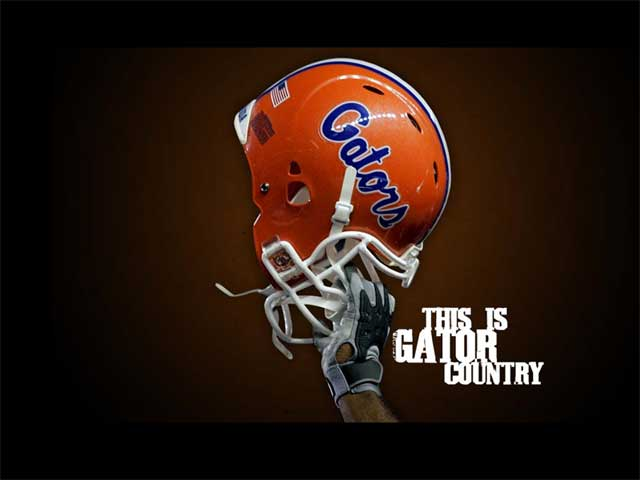 comFlorida Gator Desktop Wallpapers Florida Gators Football 640x480