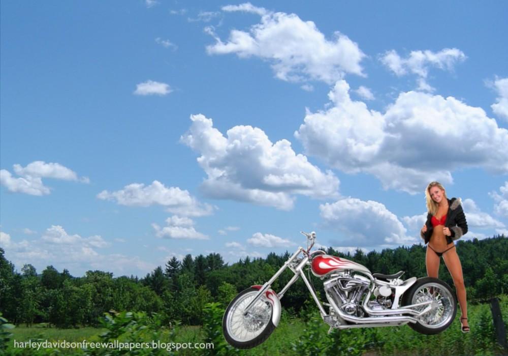 Bikinis harley davidson motorcycles