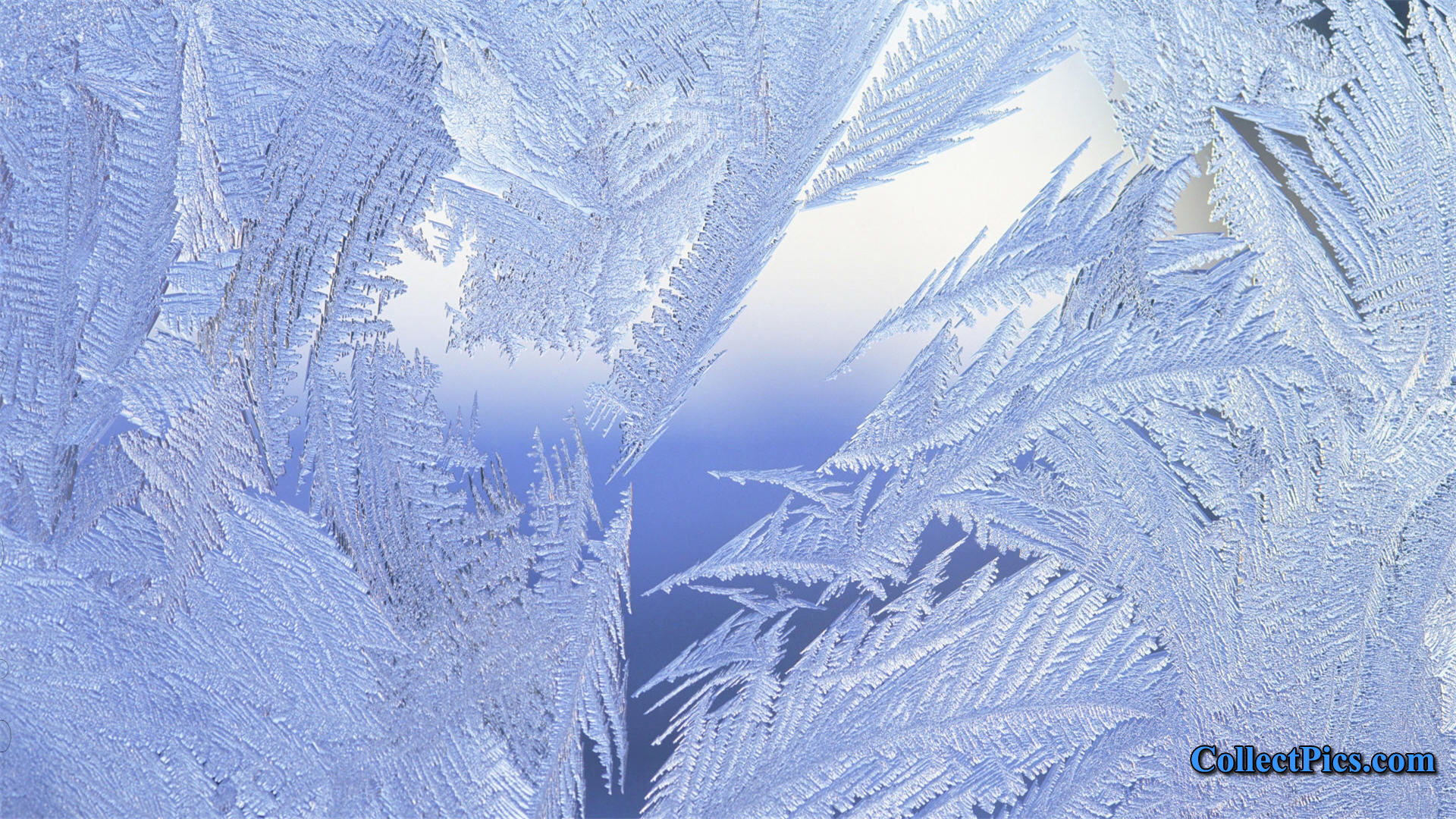 Desktop Winter Backgrounds Wallpaper HD 1920x1080 5866 1920x1080