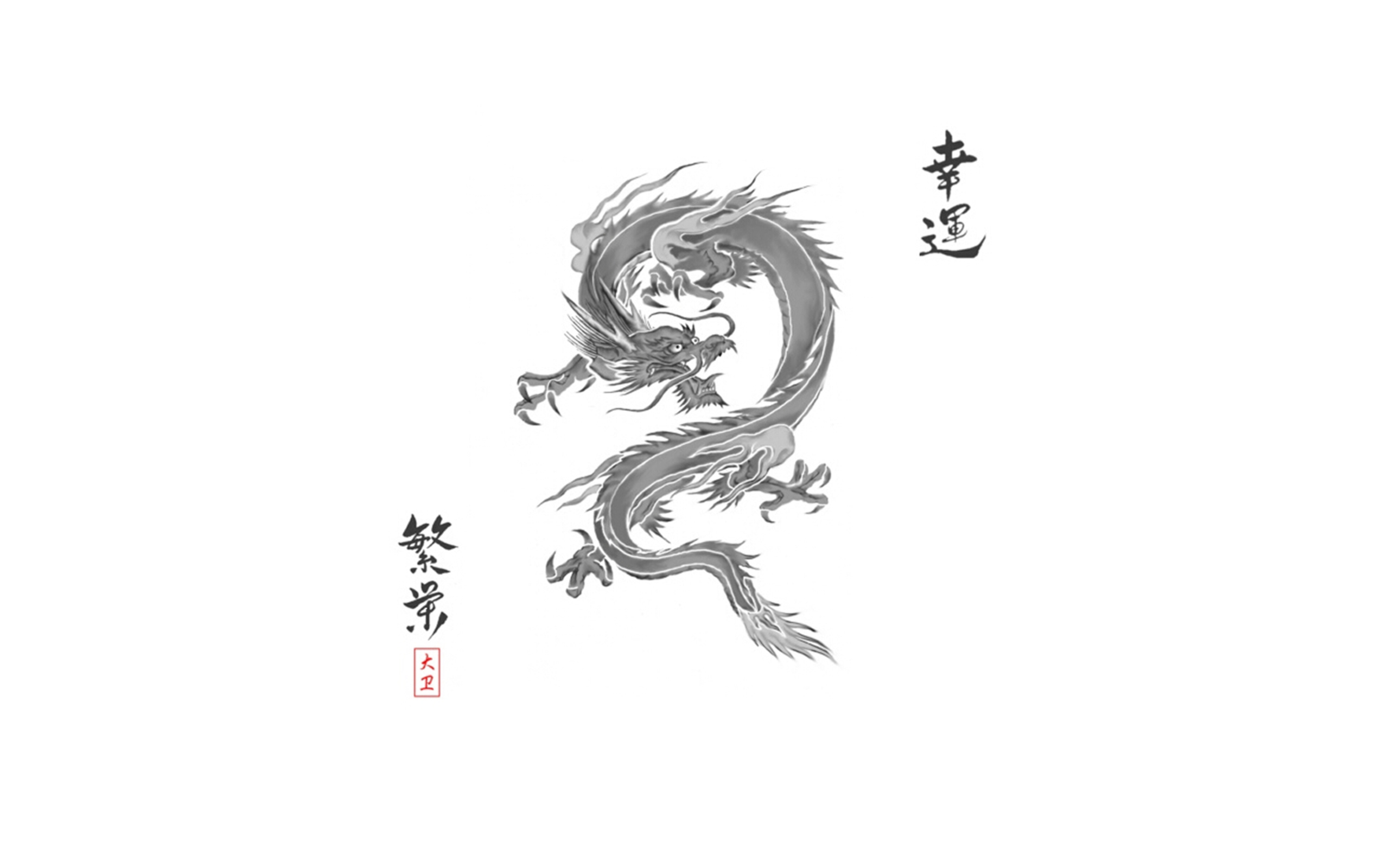 Chinese Dragon Wallpapers [2560x1600