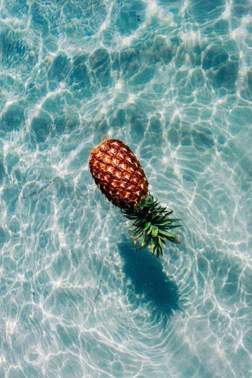 pineapple backgrounds Tumblr 500x749