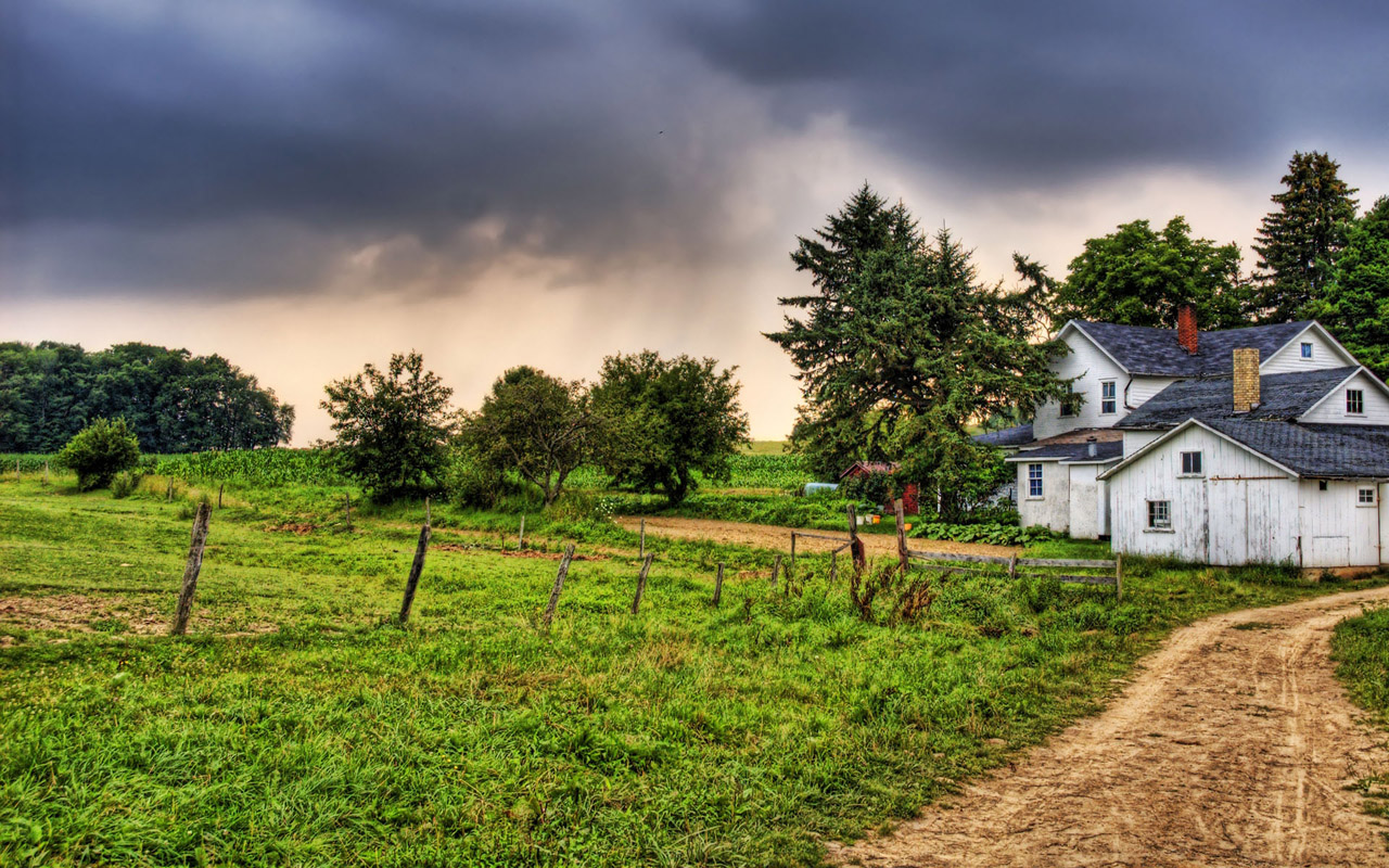 country road wallpaper download 4646 Wallpaper high quality 1280x800