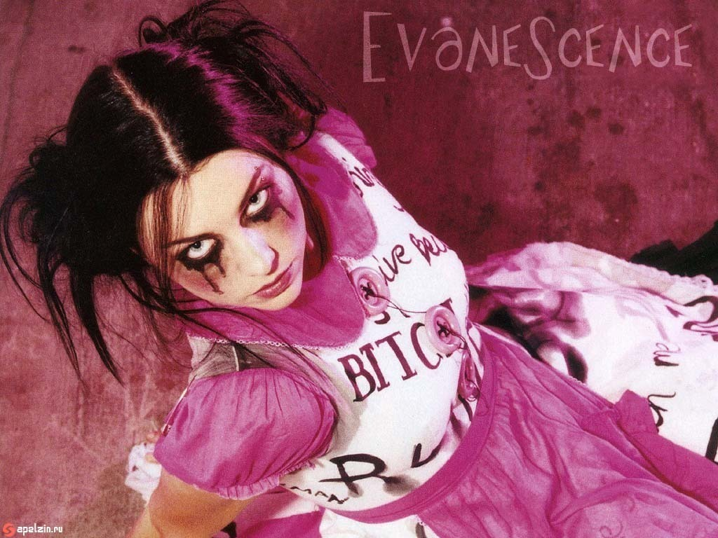 Evanescence images Evanescence wallpapers wallpaper photos 17602940 1024x768