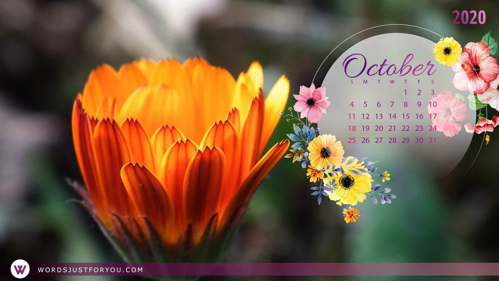 5x HD October 2020 Calendar Wallpaper 6580 Words Just for You 1920x1080