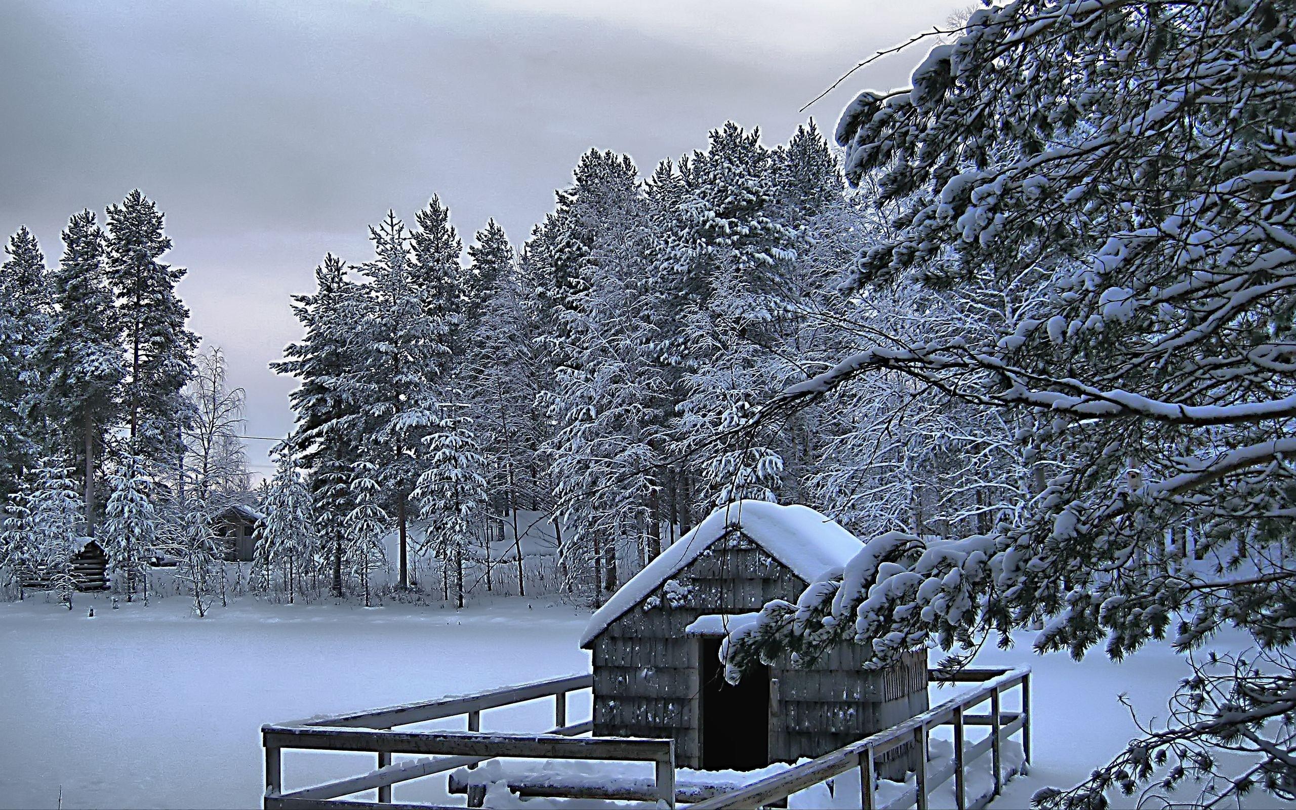 Beautiful Winter Scenery Hd Wallpapers Wallbocom 2560x1600
