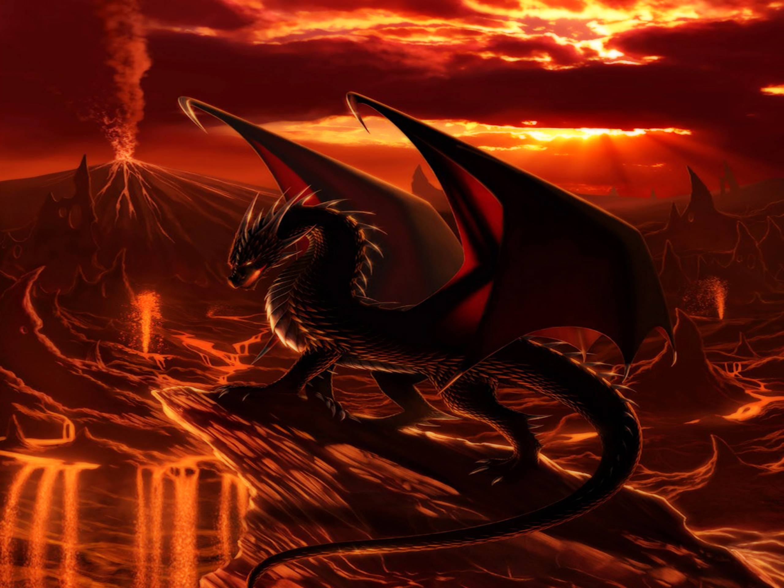 Fire Dragon Wallpapers 2560x1920