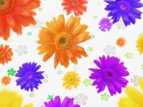 Flower Art Daisy Background Screensaver 500x375
