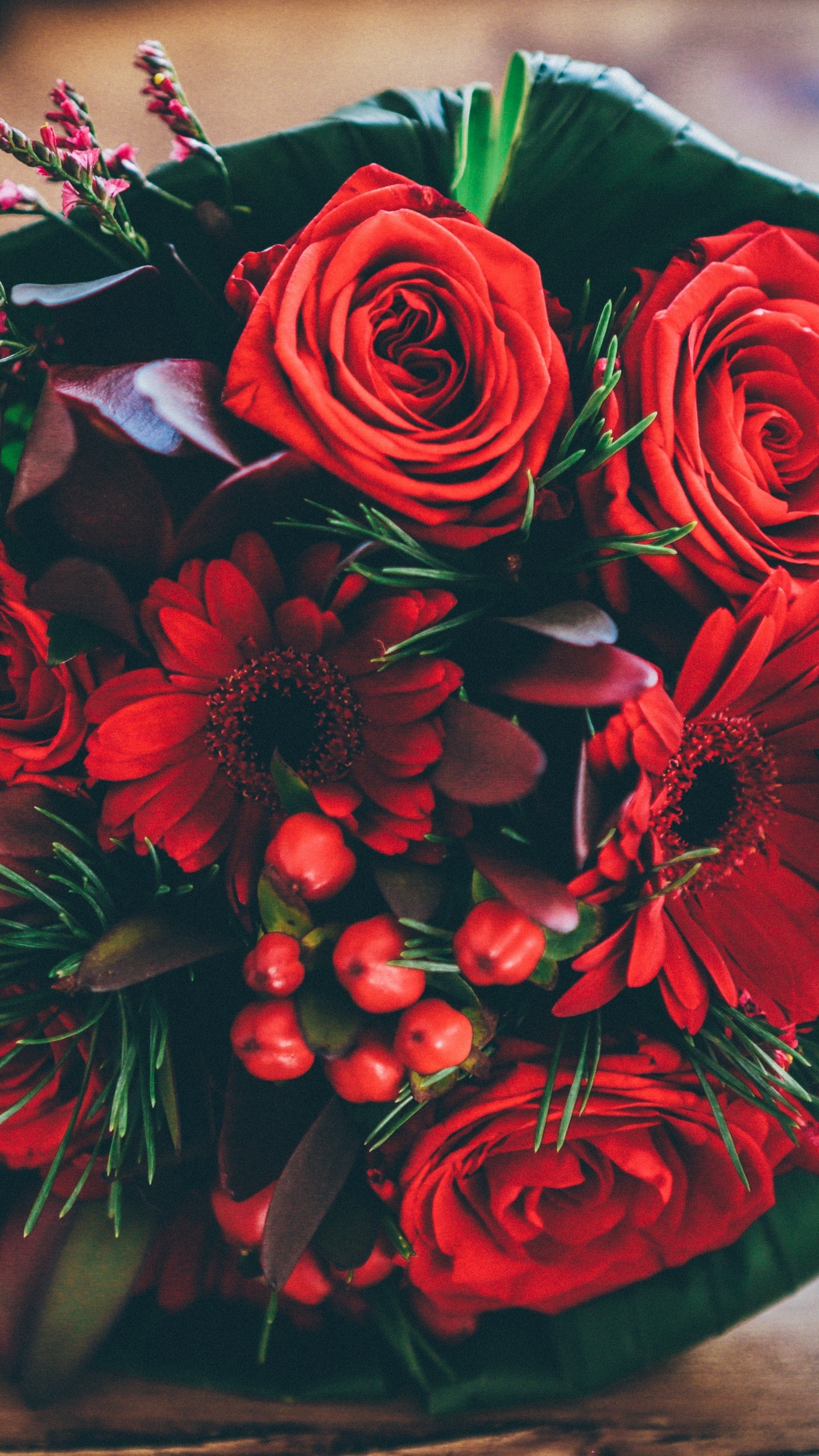170 Rose Flower Wallpapers Hd For Iphones And Android   Flower 1440x2560