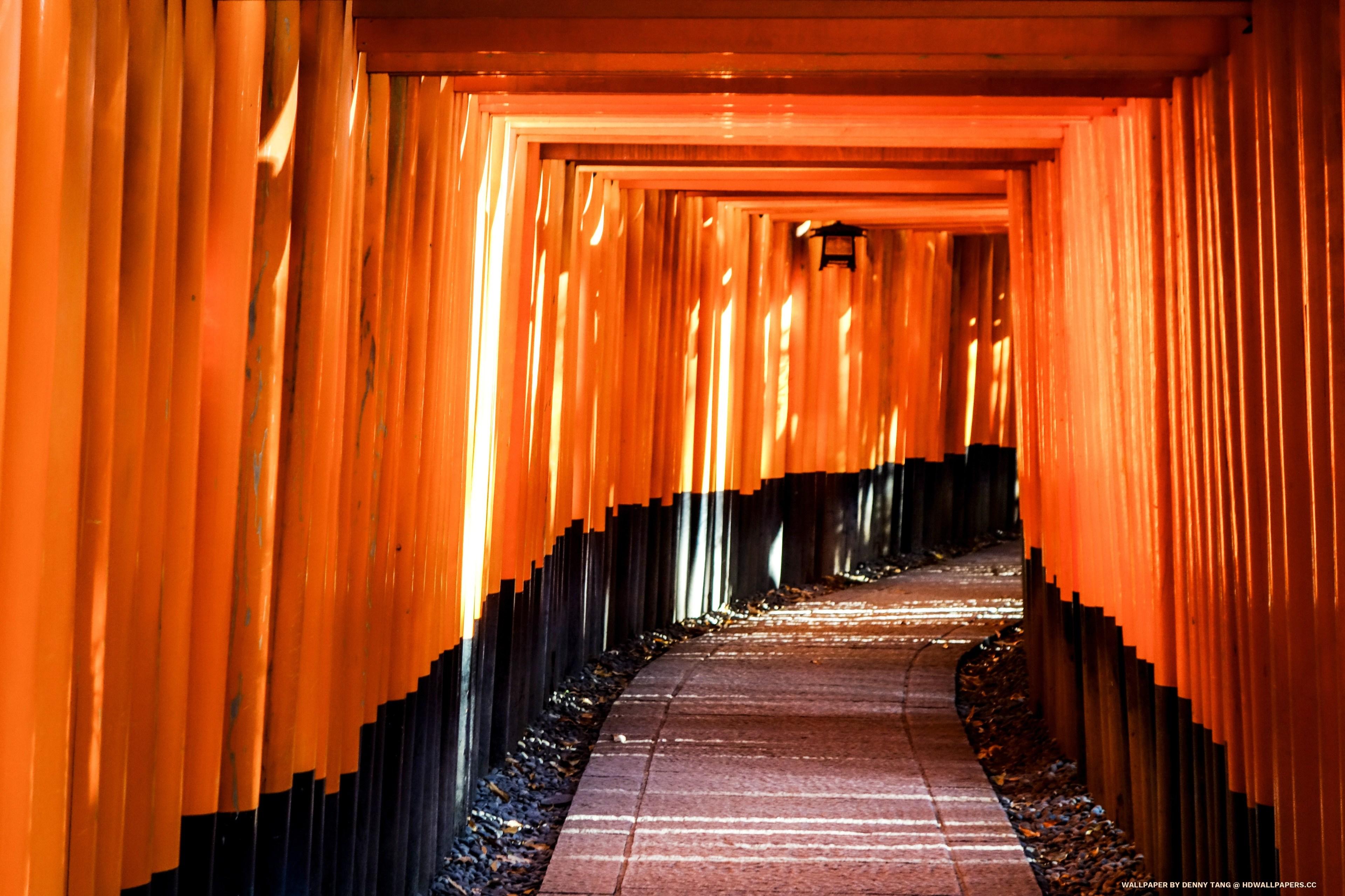 Fushimi Inari Taisha   HD Wallpapers 3840x2560