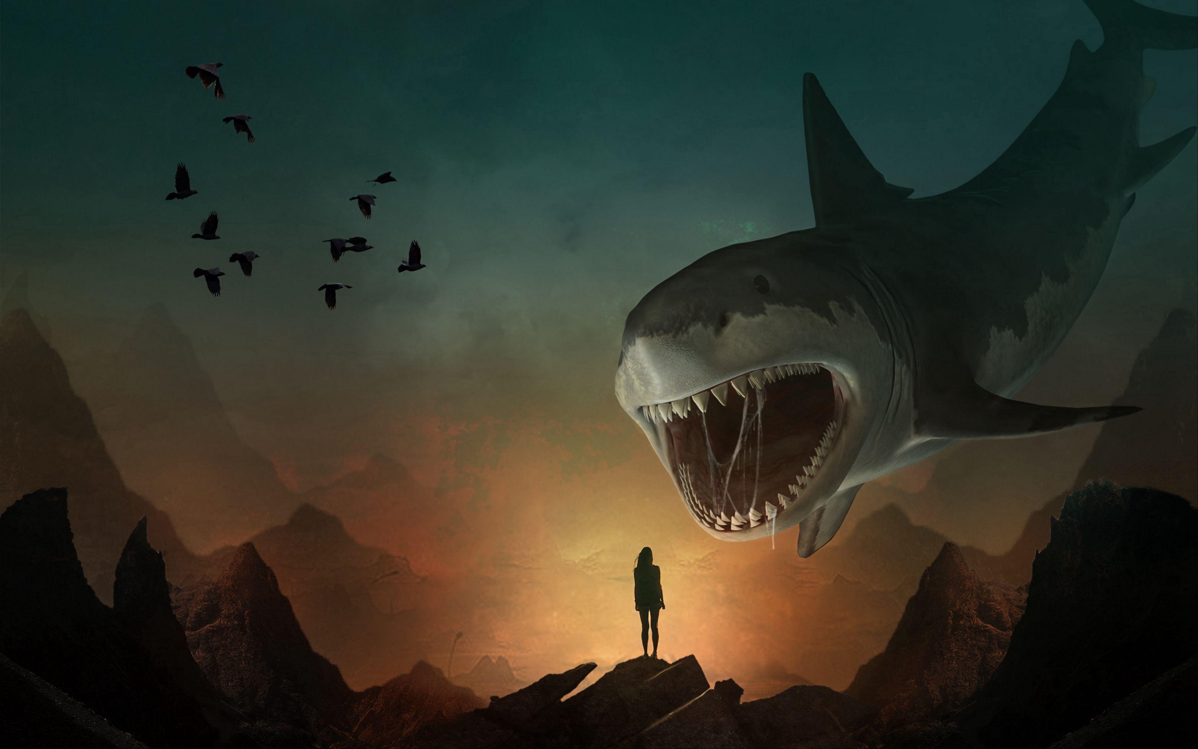 Shark Art Wallpapers   Top Shark Art Backgrounds 3840x2400
