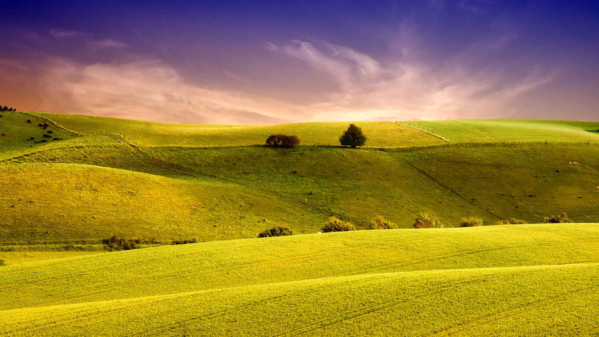 41 Green Green Meadow Wallpapers On Wallpapersafari Images, Photos, Reviews
