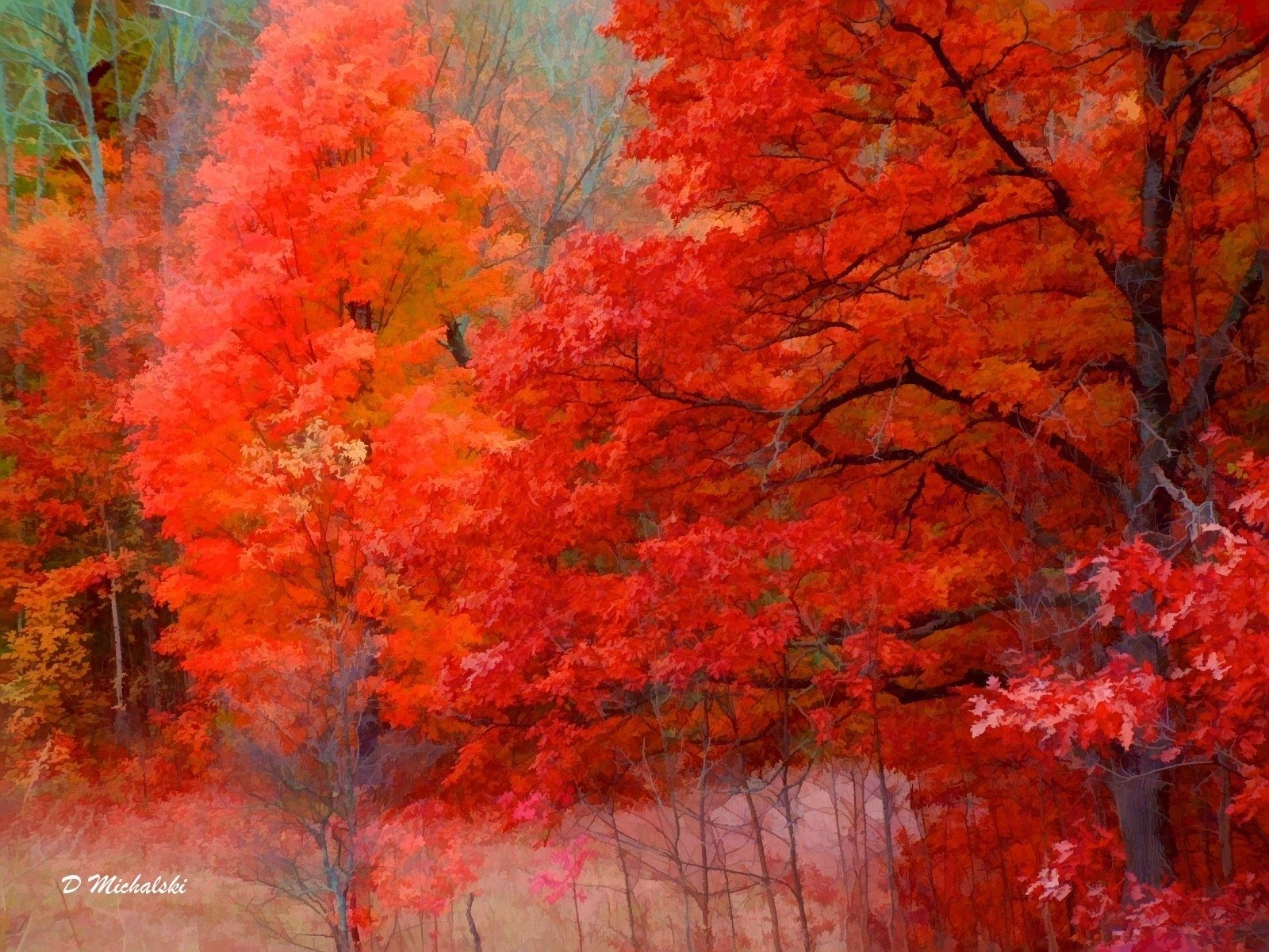 northern michigan nature art computerdestkop wallpaper 1600 798850jpg 1600x1200