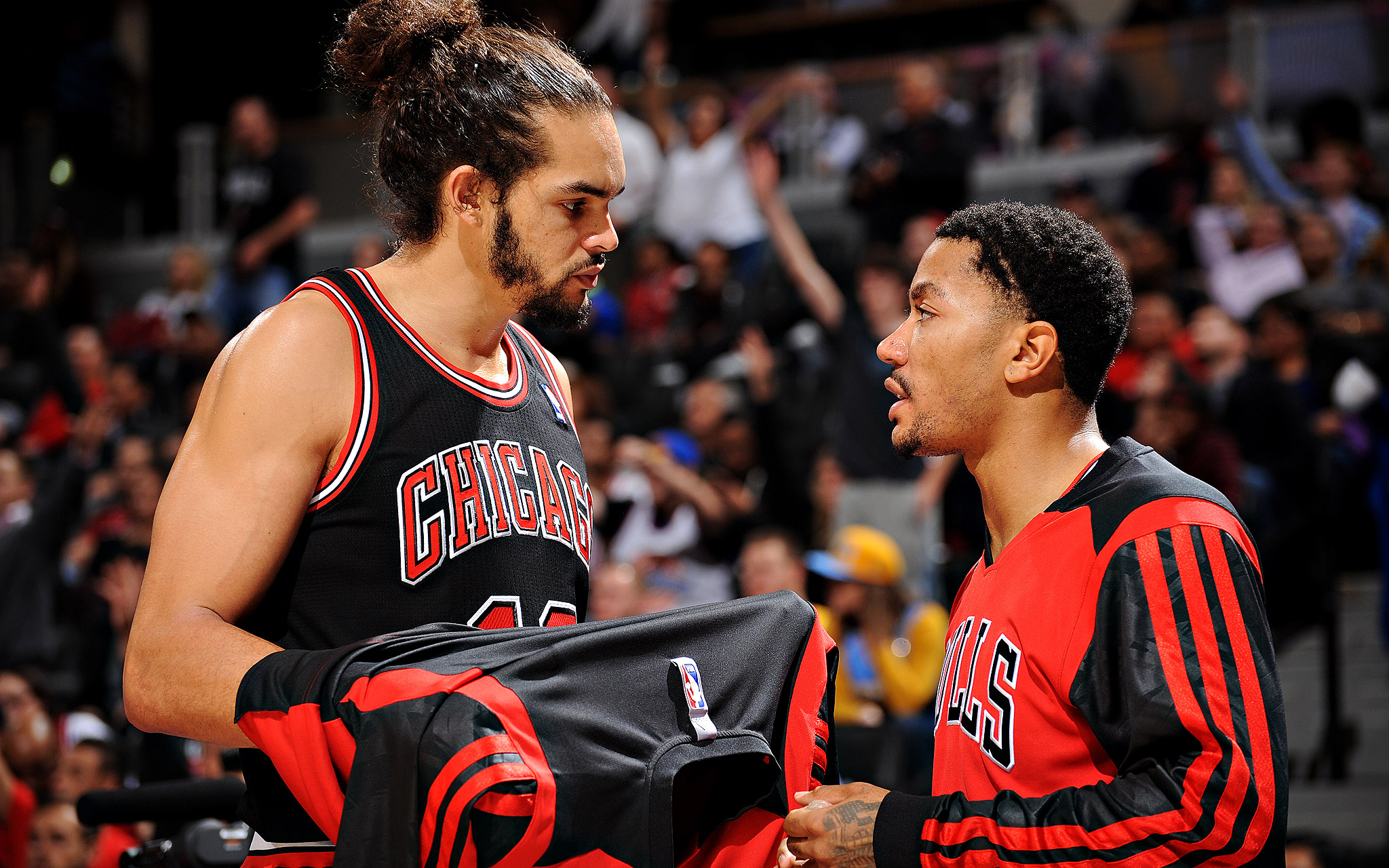 Chicago Bulls 2015