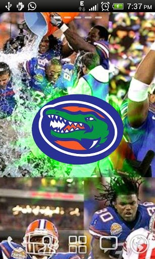 team wallpaper is available on market florida gators live wallpaper 307x512