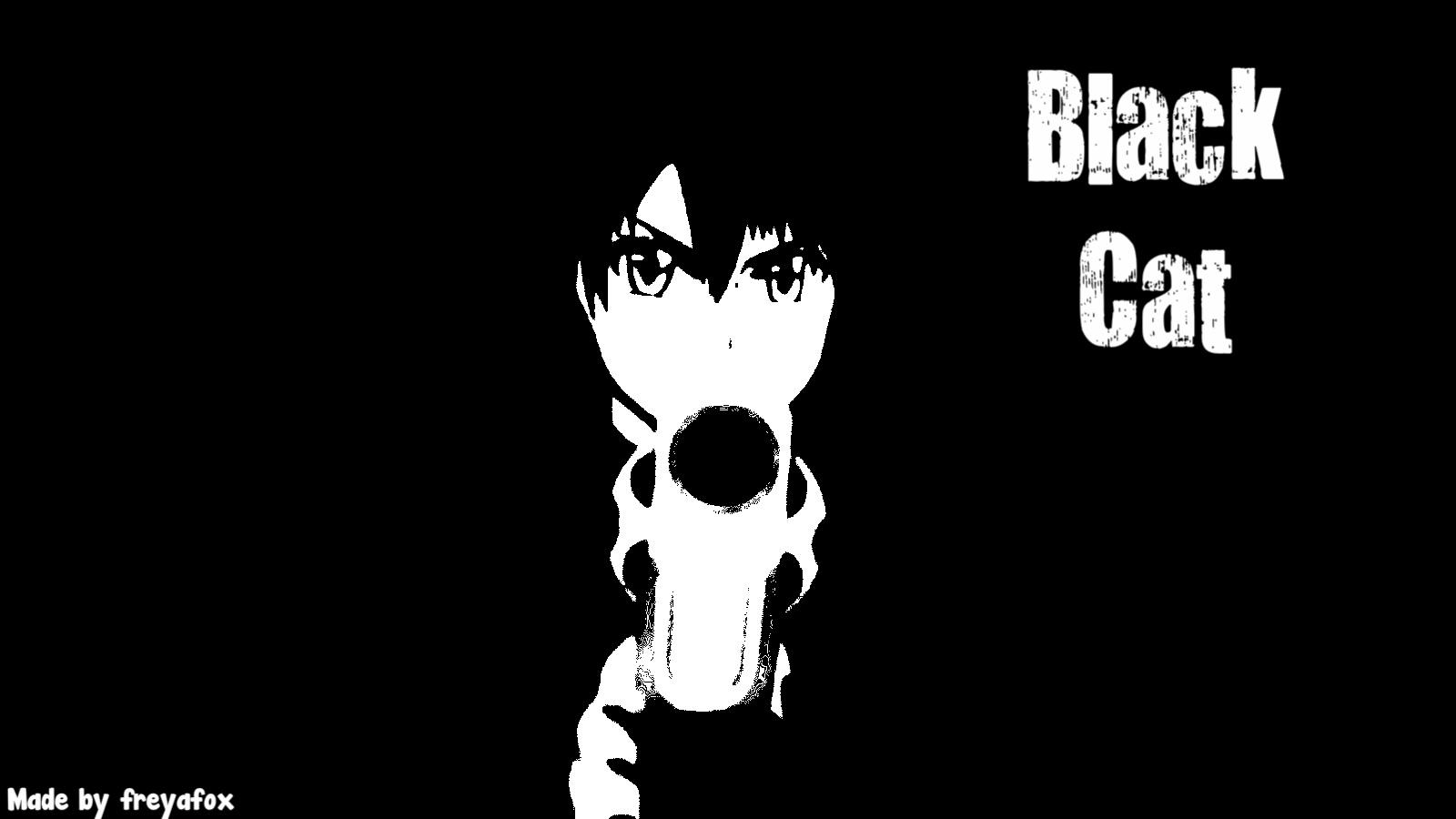 Free Download Black Cat Images Black Cat Wallpaper Hd Wallpaper And Background 1600x900 For Your Desktop Mobile Tablet Explore 29 Black Cat Anime Wallpapers Black Cat Anime Wallpaper Black