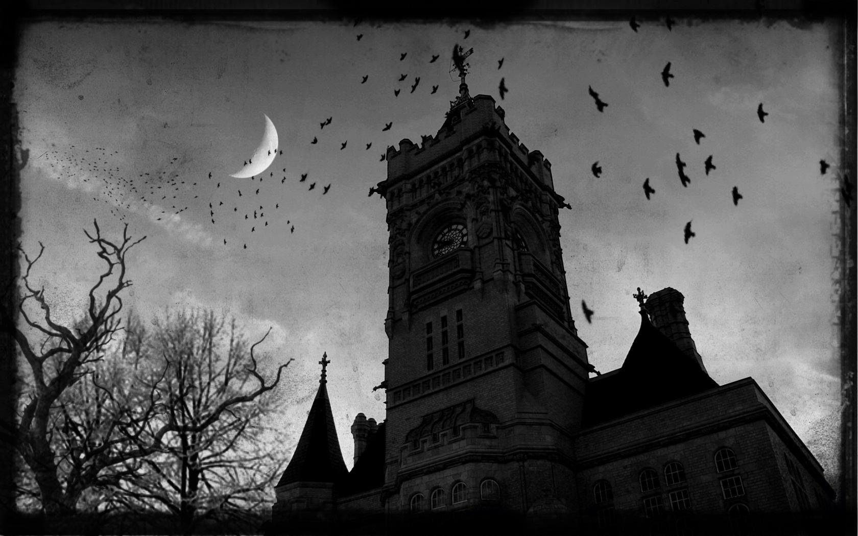 Wallpaper gothic castle dark moon raven desktop wallpaper Other 1680x1050