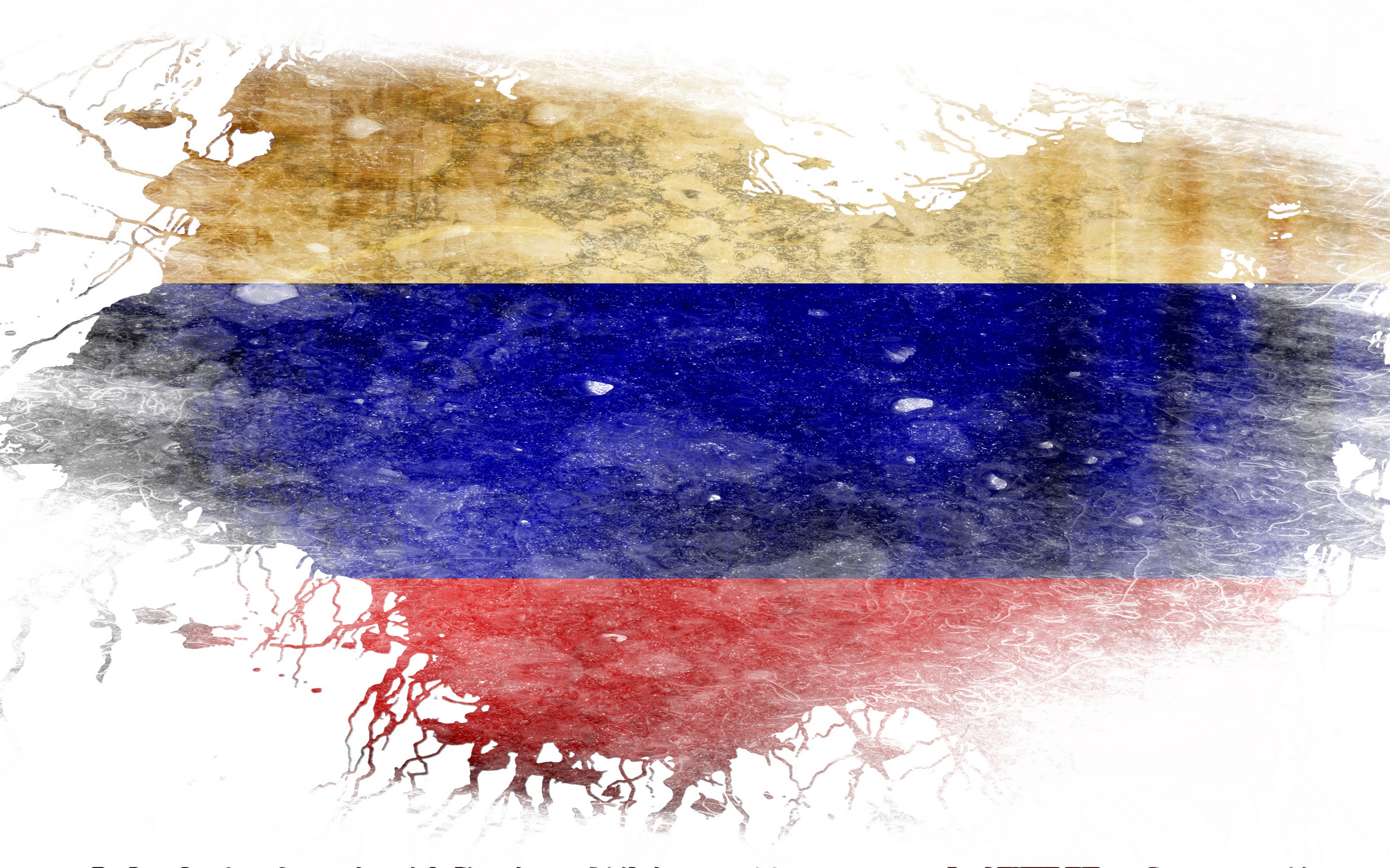 Misc   Flag Of Russia Wallpaper 2560x1600